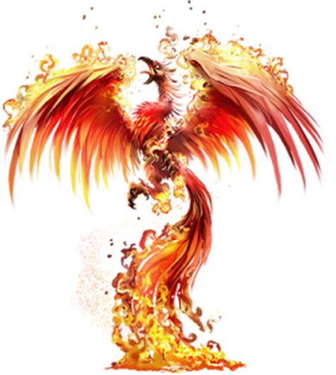 phoenix tattoo background phoenix transparent background pinterest phoenix