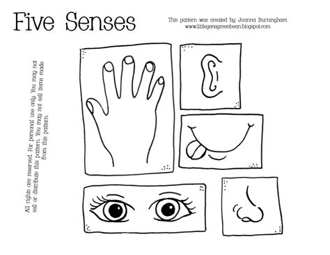 coloring pages five senses preschool five senses coloring pages preschool colorine net