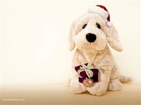 puppy teddy teddy teddybear64 wallpaper 17406044 fanpop
