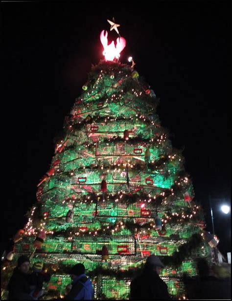 time to vote rockland s lobster trap tree in jingle