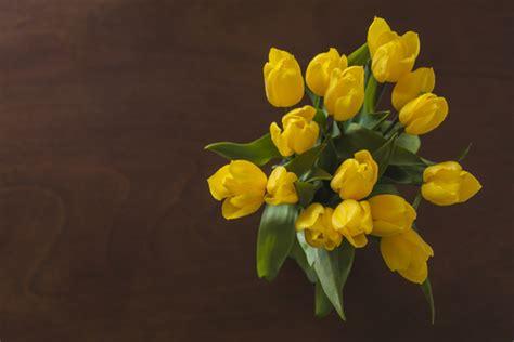 immagini fiori gialli vista dall alto di fiori gialli con sfondo in legno