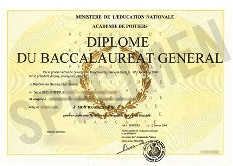 騁ude de cuisine apr鑚 le bac baccalaur 233 at 2013 option 224 l 233 tude