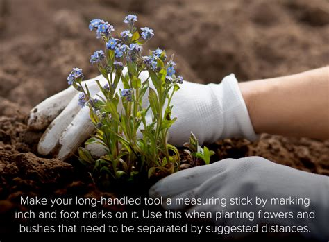 landscaping tips landscaping tips berkshire hathaway homeservices nevada