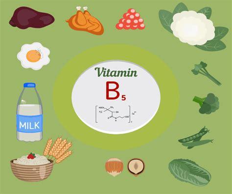 alimentos que contengan vitamina b6 10 alimentos m 225 s ricos en vitamina b5 o 193 cido pantot 233 nico