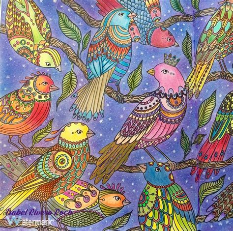 anti stress coloring book hobby lobby 295 best coloured pencil images on
