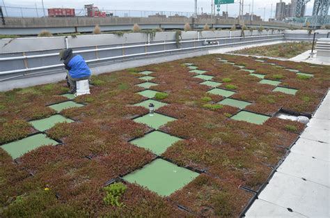 inaccessible new york earth day special the 5 boro green roof garden paradise penthouse in chelsea new york city