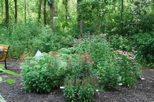 Pictures Of A Garden Healing Garden Maitland Garden Of Hope