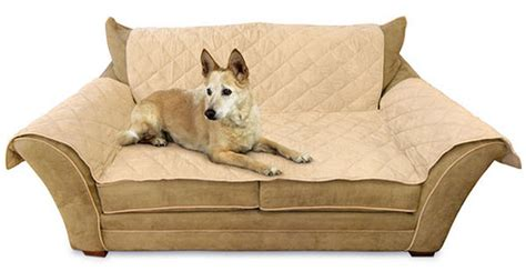 throw couch cover pet couch throw cover findabuy