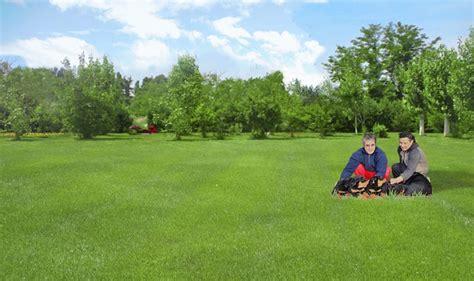 allevamenti cani pavia allevamento cani pavia allevamento cuccioli
