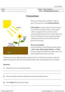 primaryleap co uk photosynthesis worksheet