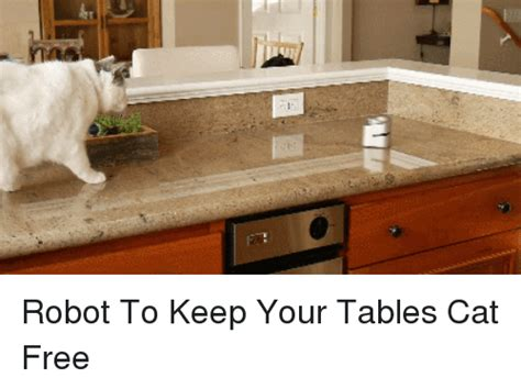 how to keep cat table to keep your tables cat free free meme on sizzle