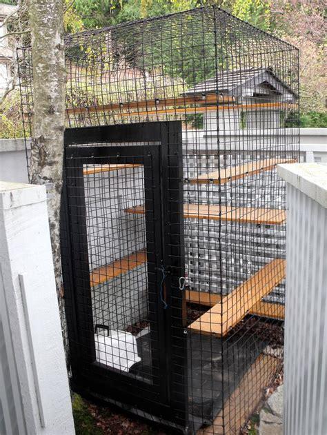 outdoor cat enclosure beautiful world living environments