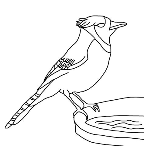 coloring pages blue bird free coloring pages of bluebird