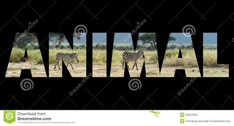 5 Letter Words Jungle word jungle green rainforest stock image