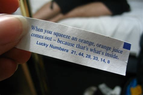 fortune next time irony and the administration of small colleges books these fortune cookies will wok your world the time