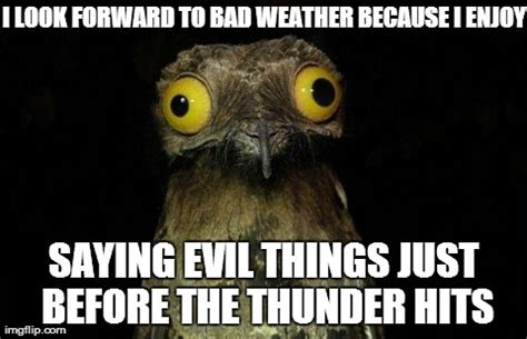 Bad Weather Meme - bad weather meme pictures to pin on pinterest pinsdaddy