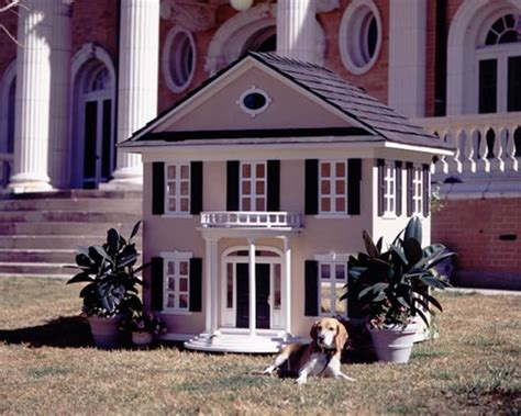 All Graphical The Most Luxurious Dog Houses