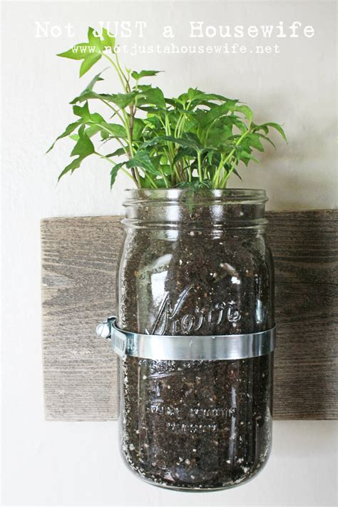 jar planter jar wall planter not just a