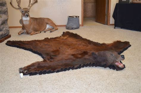 rugs with bears rug taxidermy prices rugs ideas