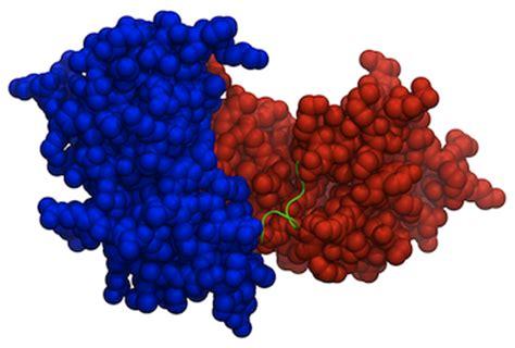m protein virus dr m sanderson viral membrane proteins