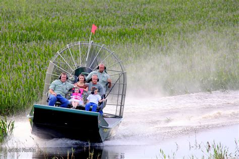 airboat orlando fl wild florida airboats and gator park airboat tours and
