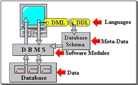 tutorialspoint for dbms world of entertainment architecture of database systems