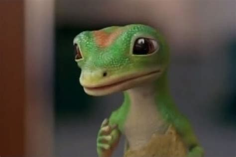 geico gecko jake wood jake wood replaced as geico the gecko after 10 years ok