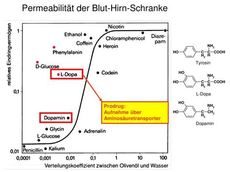blut hoden schranke ppt pharmakokinetik powerpoint presentation id 4278322