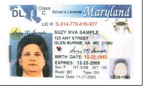 Number Search Md Maryland State Drivers License Vin Search Chevrolet Michael Ives