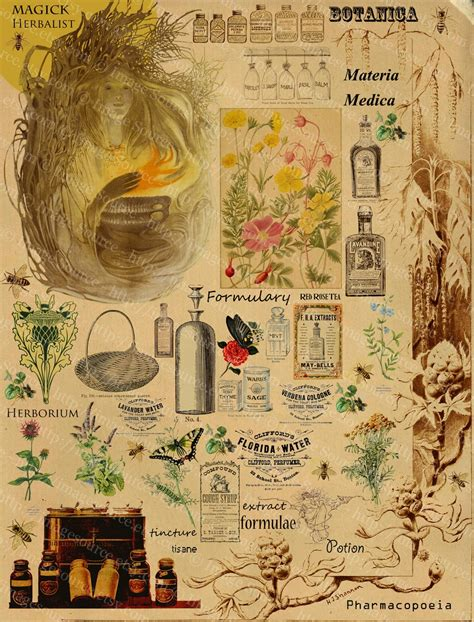 victorian apothecary printable  arts  crafts