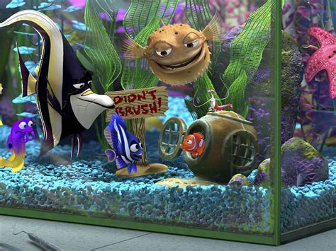 finding nemo images finding nemo hd wallpaper background photos 241335
