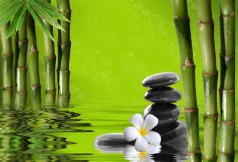 imagenes zen bambu cuadros y lienzos a medida zen zen pinterest lienzos
