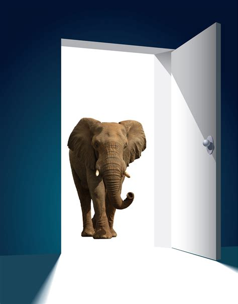 the elephant in the closet or dyslexia and should one