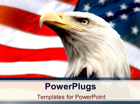 powerplugs templates for powerpoint powerpoint template bald eagle with american flag white