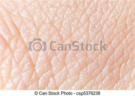 macro texture burns on human skin stock photo 415678729 pictures of human skin macro texture csp5376238 search stock photos images