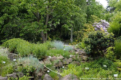 halle botanischer garten botanischer garten in halle an der saale