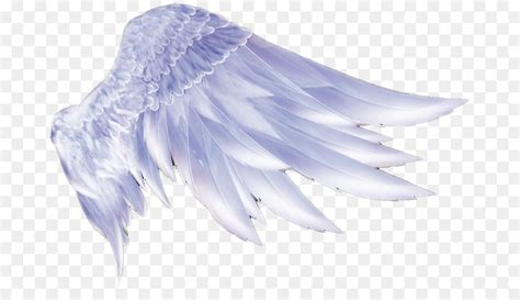 wing icon angel wings  transprent png