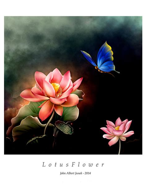 lotus and butterfly lotus flower and butterfly digital by junek