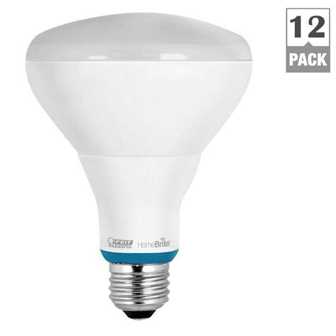 Feit Electric Led Light Bulbs Review Feit Electric 65w Equivalent Soft White Br30 Dimmable Homebrite Bluetooth Smart Led Light Bulb