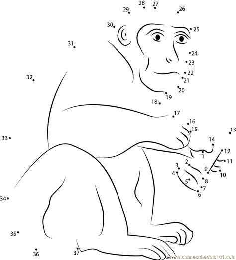 printable dot to dot monkey monkey having ice cream dot to dot printable worksheet
