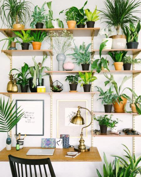tips to make small indoor garden for home 4 home ideas emilie lagrange interior architect indoor garden 5 tips