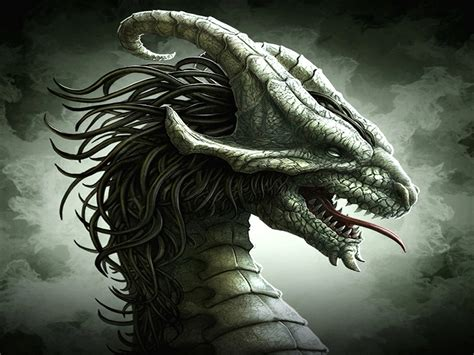dragon s 3d dragon wallpapers weneedfun