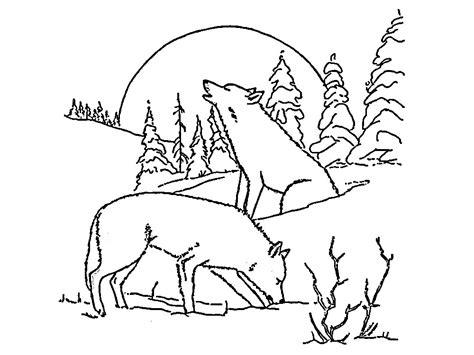 imagenes realistas para colorear lobos dibujos para colorear e im 225 genes
