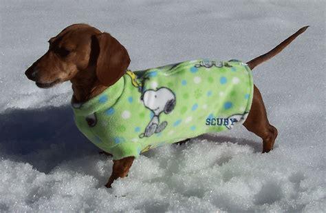 pattern for dachshund dog coat dachshund clothes patterns free clothes coat dog free