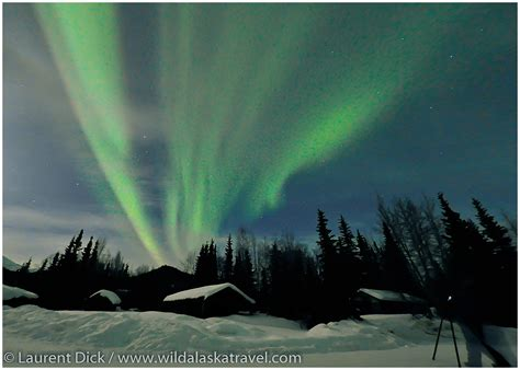 National Car Rental Port Hawkesbury by The Best 28 Images Of Northern Lights Alaska Tours Chena