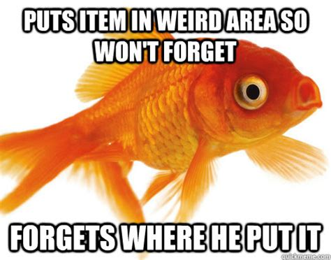 Something He Wont Forget by Puts Item In Area So Won T Forget Forgets Where He