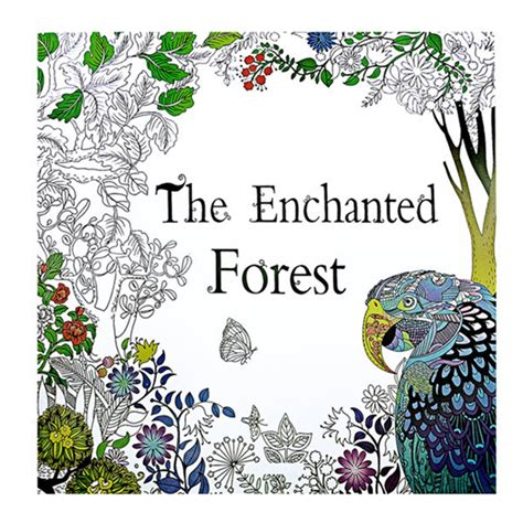 anti stress coloring book enchanted forest the enchanted forest book coloring for kid painting