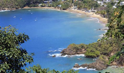 Search And Tobago And Tobago Images And Tobago Wallpaper And Background Photos 40190015