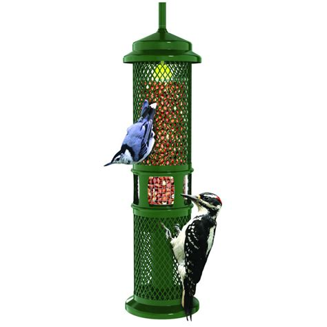 squirrel buster peanut feeder squirrel proof bird feeders