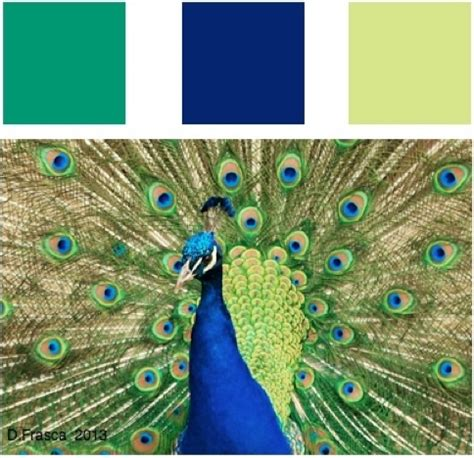 peacock green color emerald green is a gem of a color or is it decorating